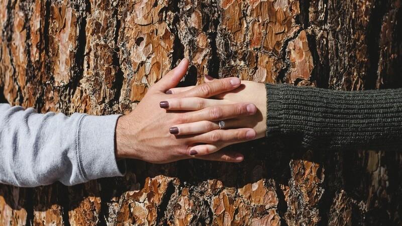 Partnerschaft, Beziehung & Sexualität